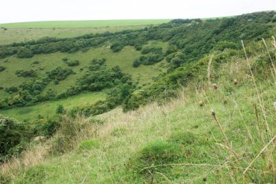 End of a valley with grassy slopes broken by scrub