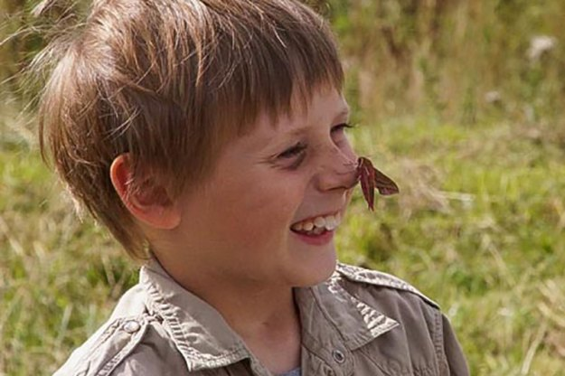 Boy with moth on his nose