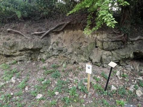 Rock Pit Farm