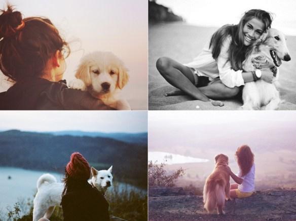 inspiração-fotos-com-seu-cachorrinho0