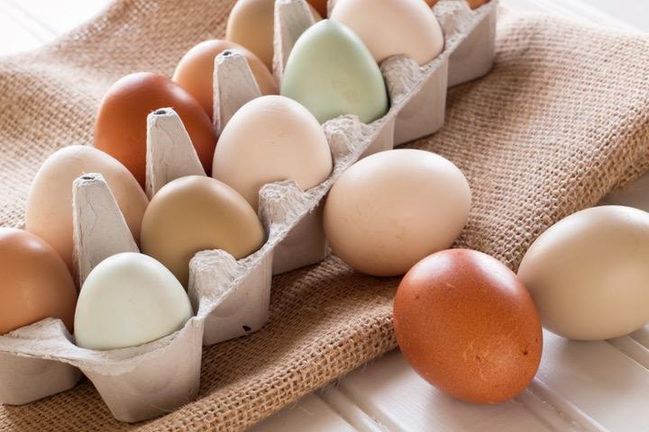 Dos Juans Chicken Eggs