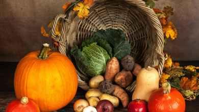 Photo of Je organska hrana res prijaznejša okolju?