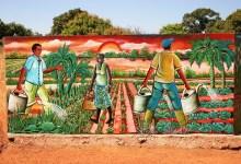 Photo of Postani prostovoljec v Afriki!