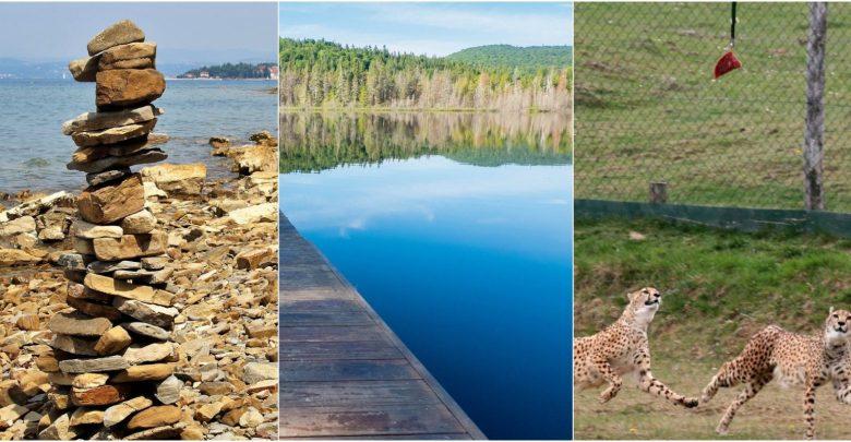 izlet, izlete, Simonov zaliv, Rogla in Lovrenška jezera
