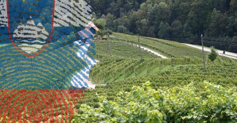 Slovenija, 1991, Jugoslavije, Evropsko unijo, Deklaracija o neodvisnosti