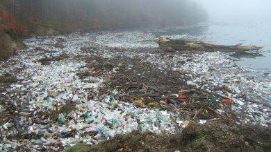Photo of V Sredozemsko morje odvržemo 24 milijona ton odpadkov