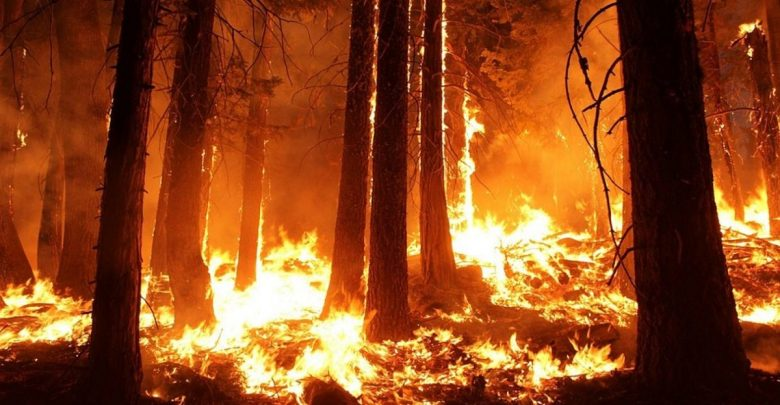 Zrće, Požar, Pag, hrvaška,