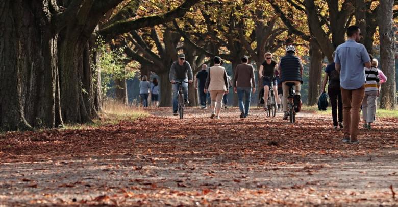 Evropski teden mobilnosti, Gremo peš, moški , ženske, Javni potniški promet,
