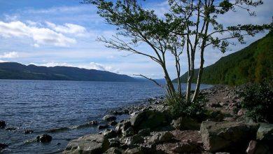 Photo of Razkrita skrivnost pošasti iz Loch Nessa?