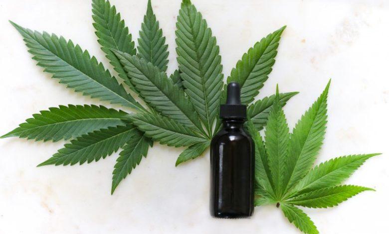 Kanabinoid, duševno zdravje, Svetovna zdravstvena organizacija, stres, serotonin, fizično zdravje, izguba telesne teže, THC