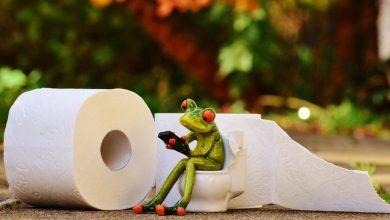 Photo of Izračunaj, koliko toaletnega papirja porabiš