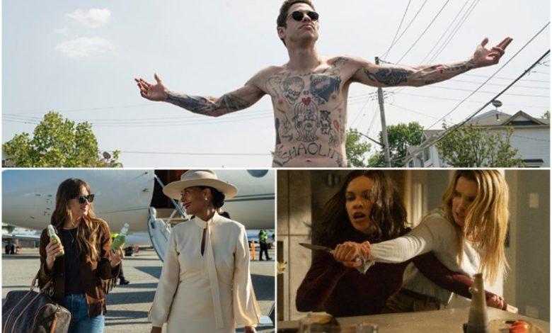 filmske uspešnice, srhljivka. Kinematografi, Hišni kino, The King of Staten Island, The High Note, the hunt, lov,