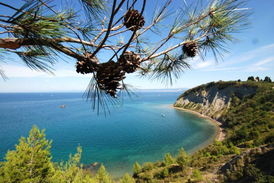 plaža, na plaži, morje, meduza, LifeClass Portorož,