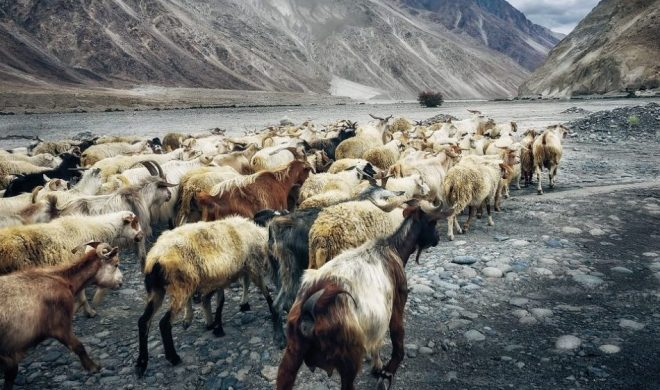 road trip, red bull, Tianmen, Avtocesta, Rohtang,