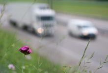 Photo of Slovenija bo dosegla letošnje cilje glede zmanjšanja izpustov