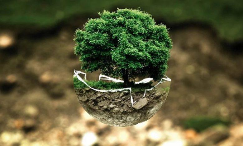 onesnaževanje , Mladi, Plastika, recikliranje,