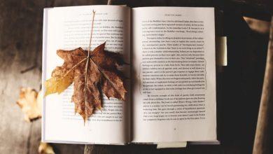 Photo of Literarni natečaj Študentsko življenje zaključen, znani so zmagovalci