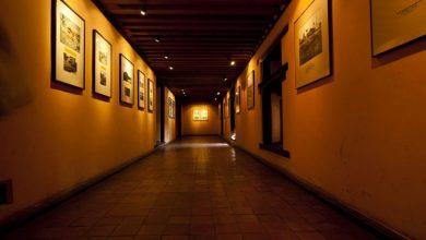 Photo of V Mariboru razstavljena dela slepih in slabovidnih slikarjev in fotografov