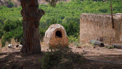 Photo of Ob začetku gradnje daljnovoda v Ormožu odkrili izjemno rimsko peč