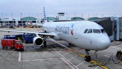 """Photo of American Airlines bo na poletih prepovedala živali za """"čustveno podporo"""""""