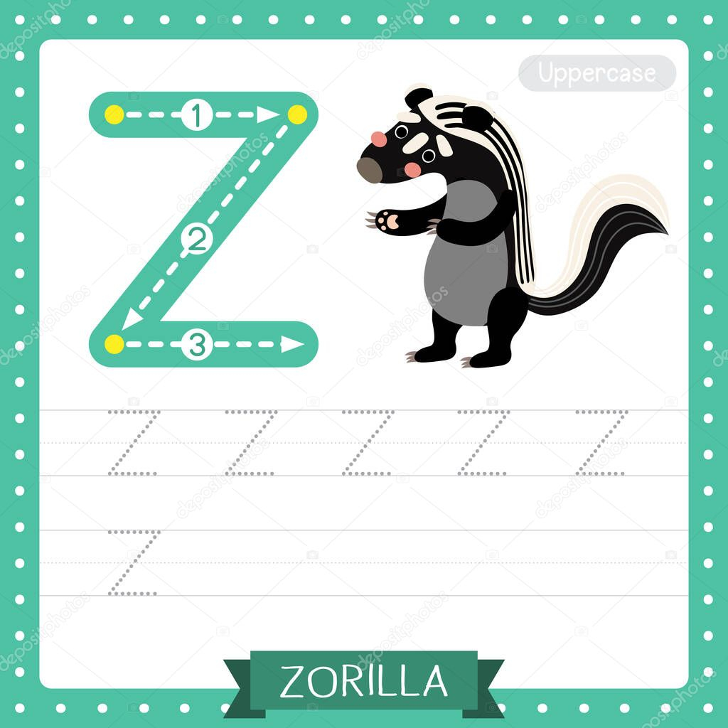 Letter Z Zoo Tracing Worksheets Preschool