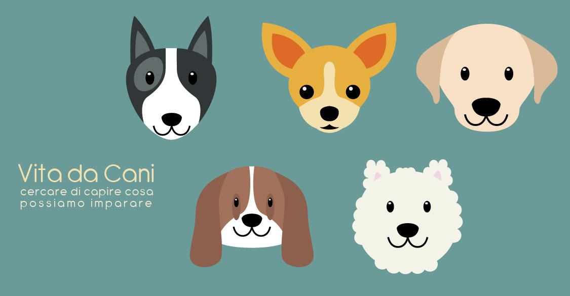 Vita da cani - il blog del dottormic -