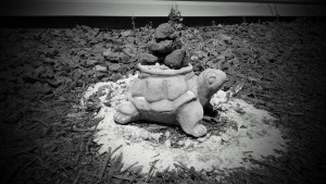 stone turtle planter with stacked lava rocks on top