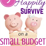 9 Ways to Happily Survive on a Small Budget!