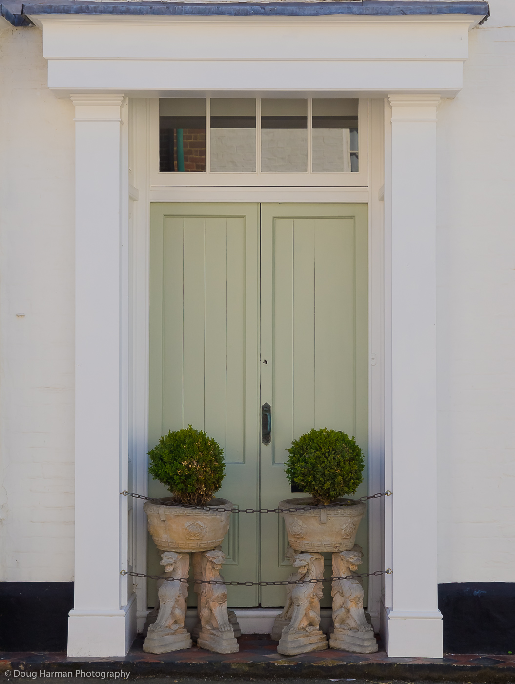 A green door and two planters. part of my Doorways project.