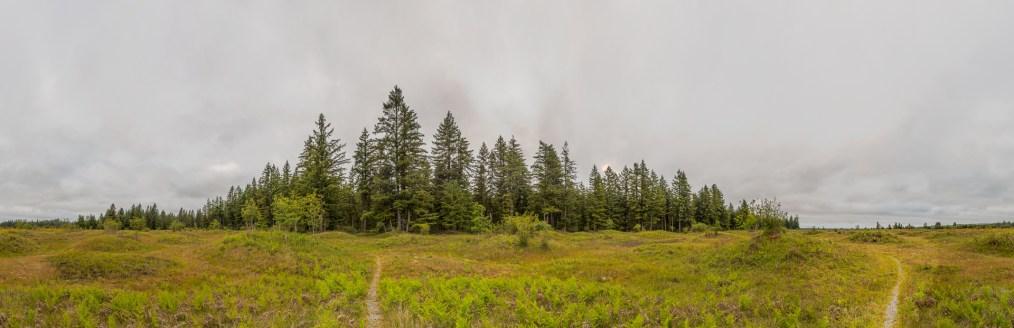 Mima Mounds, Washington