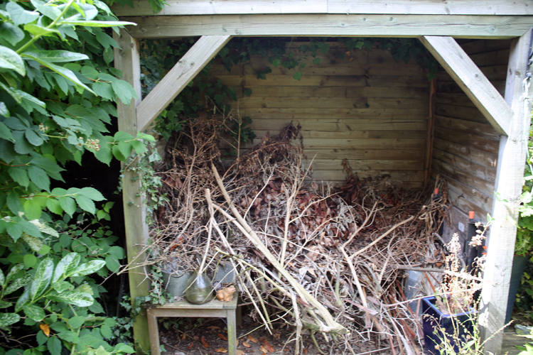 Open fronted shed