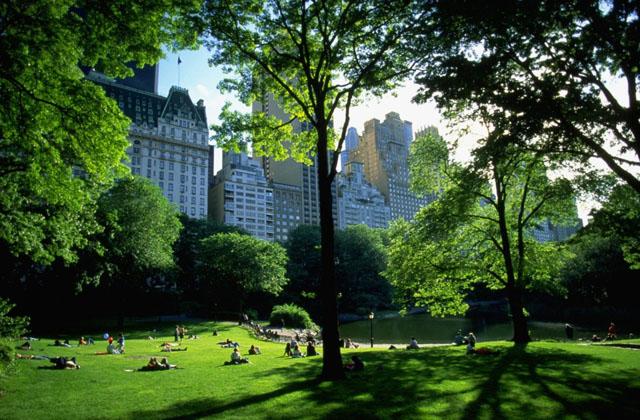 World_USA_New_York_Central_Park__NY_021678_