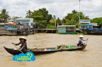 Vietnam_delta
