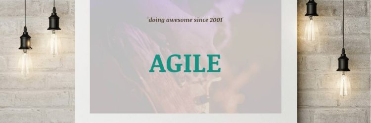 Agile DOvelopers