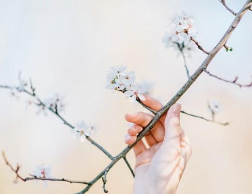 10 legeretes la vie plus belle - anna chen life coach de vie