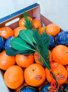 Mandarine - anna chen life coach de vie