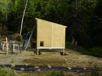 Chicken door cut out of the sheathing