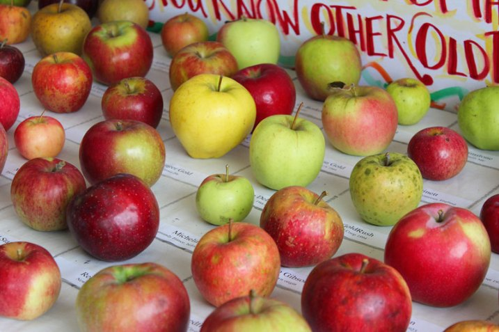 country apple identification