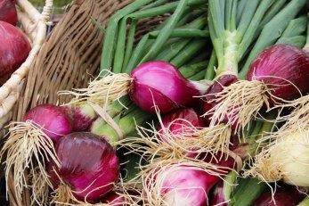 beautiful onions
