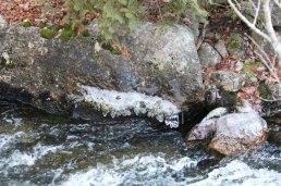 Ice droplets along Tunk Stream