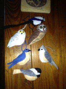 Alyssa's Birds