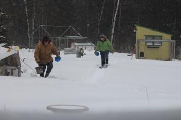 Feeding critters in a blizzard