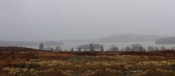 Autumn in fog