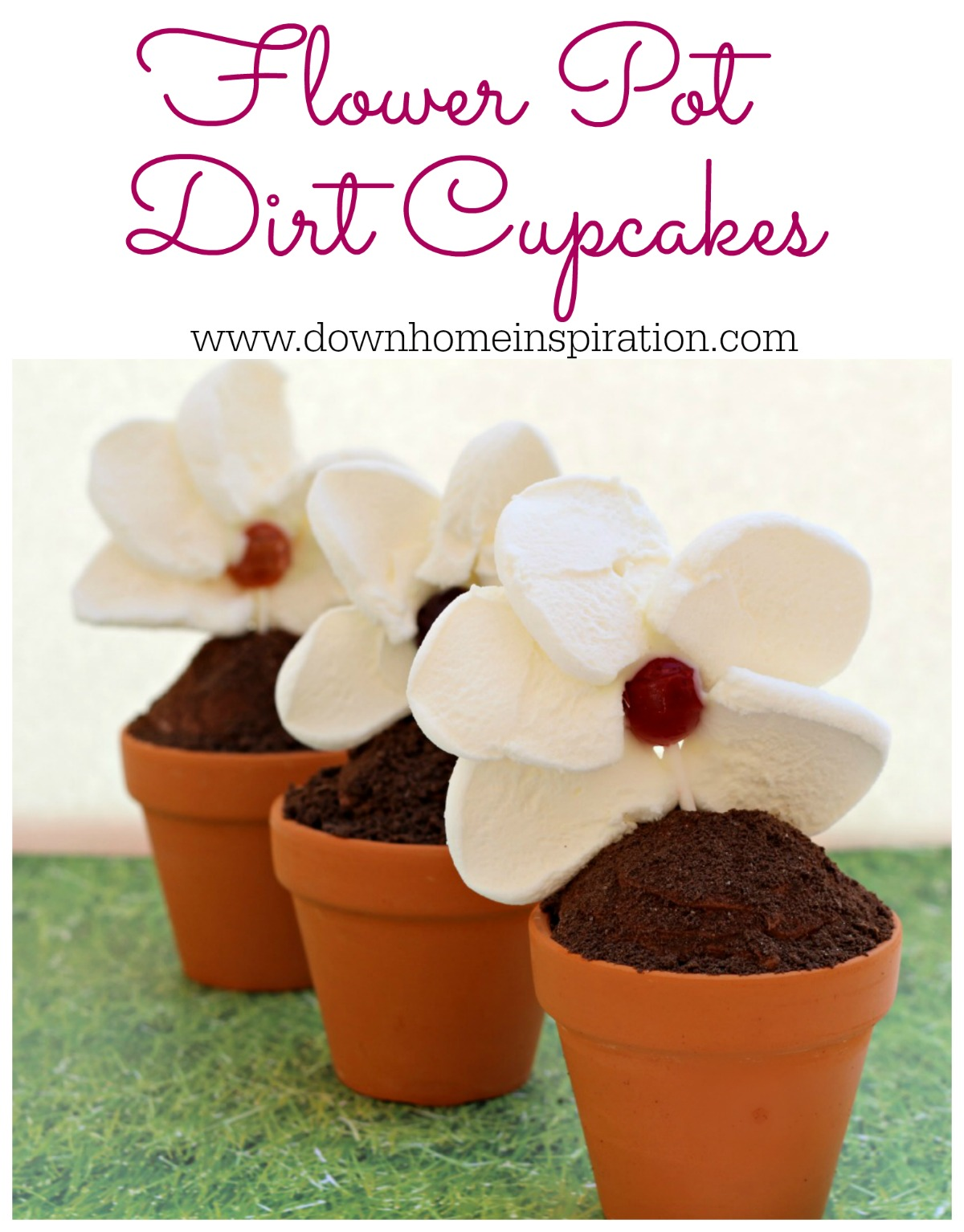 254 & Flower Pot Dirt Cupcakes - Down Home Inspiration