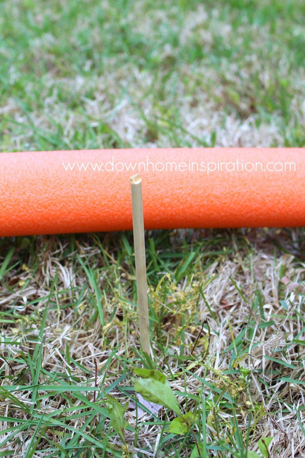 pool-noodle-croquet-2