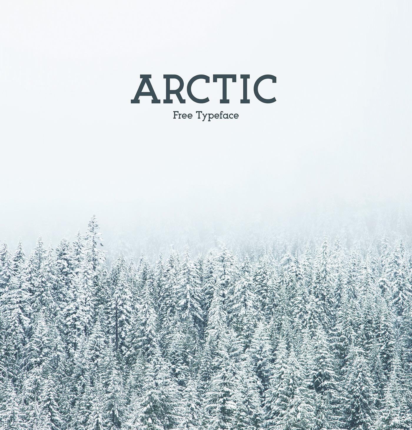 arctic-font