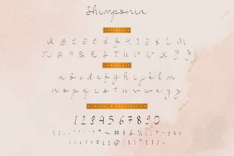 Shimponia-Calligraphy-Font-3