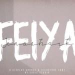 Jenoshark Feiya Font Duo
