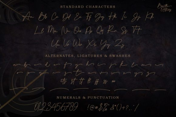 Bonitha-Octavy-Signature-Font-3