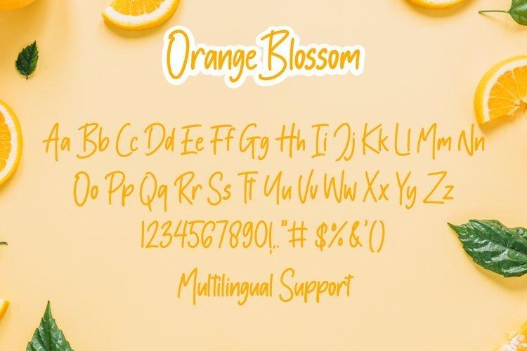 Orange-Blossom-Handwritten-Font-3